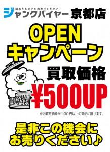junk500